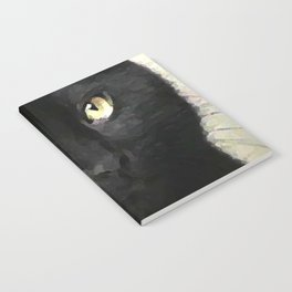 Swoozle's Black Cat in Repose Notebook