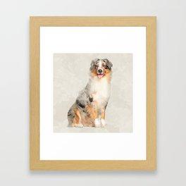 Australian Shepherd - Blue Merle Watercolor Digital Art Framed Art Print