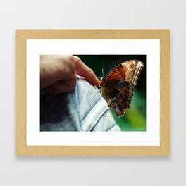 Butterfingers Framed Art Print