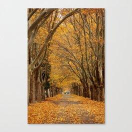 Fall Tunnel Canvas Print