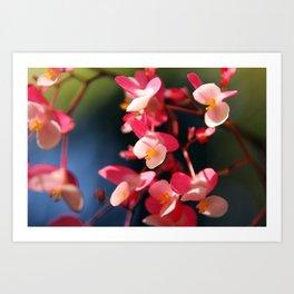 Flower Bokeh Art Print