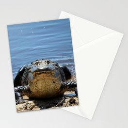 Smiling For The Camera Stationery Cards