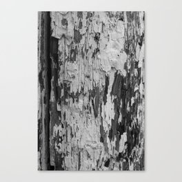 Chipping Away Canvas Print