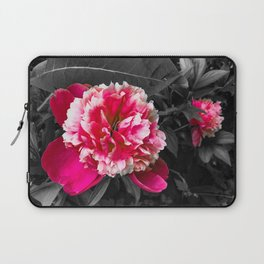 Paeony pink black and white Laptop Sleeve
