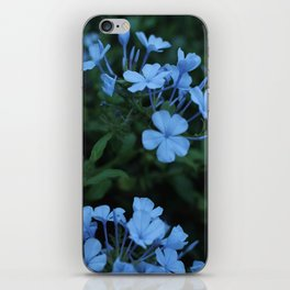 Beneath the flowers iPhone Skin