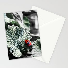 Lady Bugs Caught In Action Stationery Cards