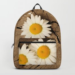 Daisies on wooden background Backpack