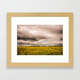 flower fields - horizontal Framed Art Print