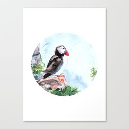 Atlanic Puffin sitting on the rocks by the ocean Canvas Print