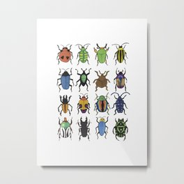 Beetle Species Metal Print