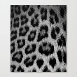 Leopard print in black and white Canvas Print