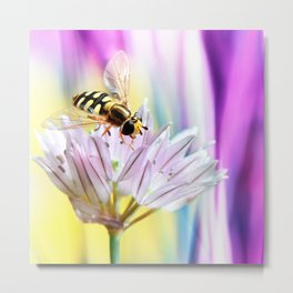Hover fly and chive blossom Metal Print