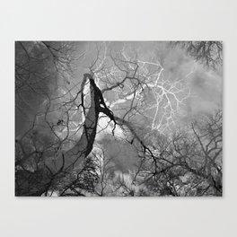 364 | austin Canvas Print