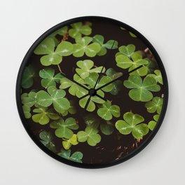 Redwood Sorrel - Nature Photography Wall Clock