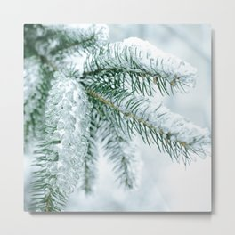 Winter landscapes Metal Print