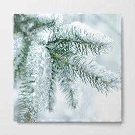 Winter landscapes Metal Print