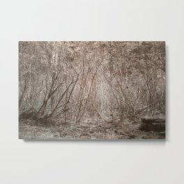 Demonstration Forest in Infrared Metal Print