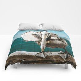 Pelican Says Hi Comforters