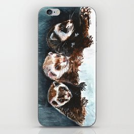 Three Sleepy Ferrets iPhone Skin