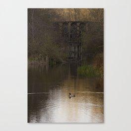 Duck on a Pond Canvas Print