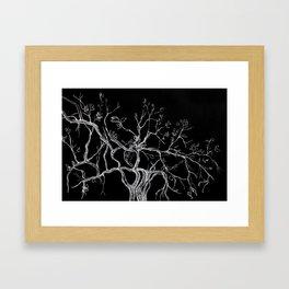 Graphic art, tree leaves, white ink Framed Art Print