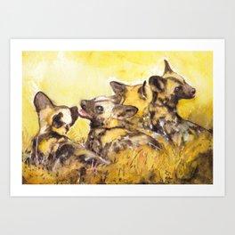 Wild dog pubs Art Print