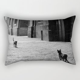 Two French Cats, Paris Left Bank black and white cityscape photograph / photography Rectangular Pillow