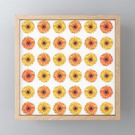 Colorful Gerbera Daisy Flower Pattern Framed Mini Art Print