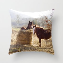 Pair of Brown Horses in the Southern French Countryside - Nature and Landscape Photography in France Throw Pillow