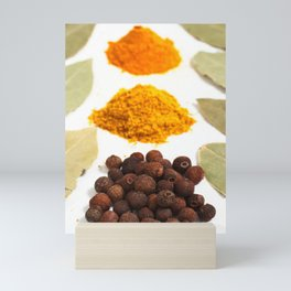 Spices Mini Art Print