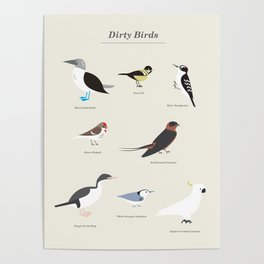 Dirty Birds Poster