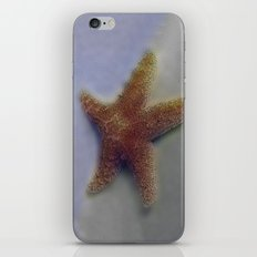 Summer Dreams iPhone & iPod Skin