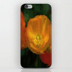 campari orange iPhone & iPod Skin