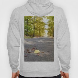 Remote country road through Autumnal woodland. Norfolk, UK. Hoody