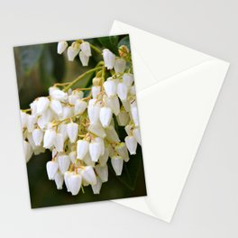 White Bells Stationery Cards