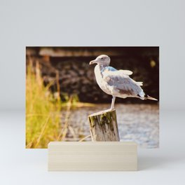 Gull Post Mini Art Print