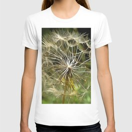 Tragopogon Wildflower Salsify T-shirt