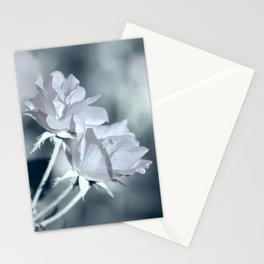 Twin White Roses Stationery Cards