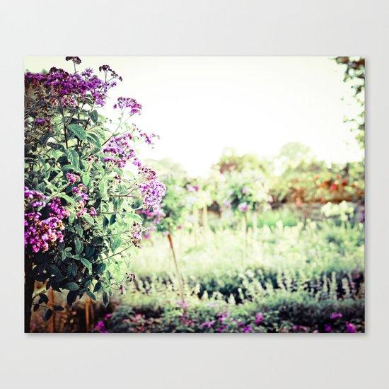 Midsummer Splendor Canvas Print
