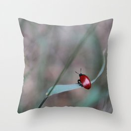 Red poplar leaf beetle on a blade of grass Throw Pillow