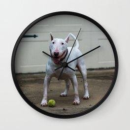 Englis Bull Terrier Wall Clock