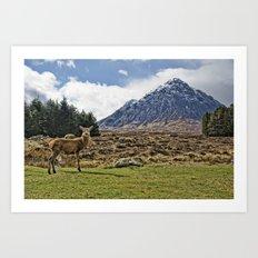Deer with Buachaille Etive Mòr Art Print