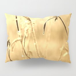 Foggy Morning With Golden Tones Pillow Sham