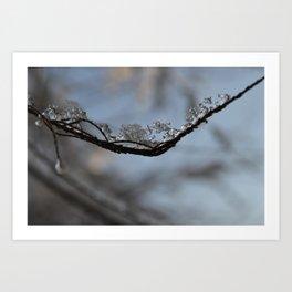 Winter Frozen Art Print