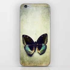Vintage Butterfly 4 iPhone & iPod Skin