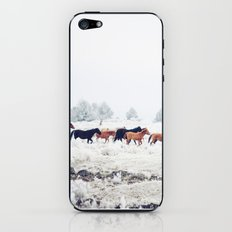 Winter Horse Herd iPhone & iPod Skin