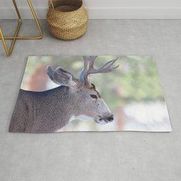 Watercolor Deer, Mule 07, RMNP, Colorado, The Bust Rug