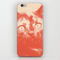 kitten iPhone & iPod Skins featuring KITTEN by Allyson Johnson