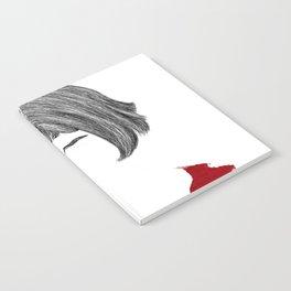 Amelie Notebook