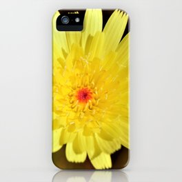 Yellow Desert Bloom by Reay of Light Photography iPhone Case
